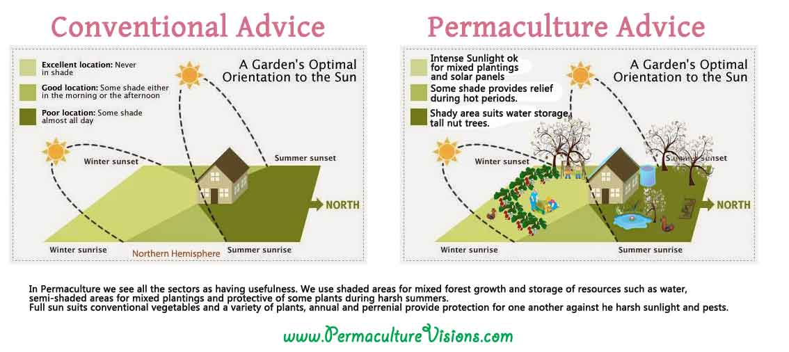 Difference between organic farming and permaculture permaculture